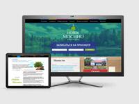 Сайт для коттеджного посёлка «Новое Мосино»