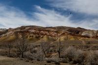 Красные горы реки Кызыл-Чин (Горный Алтай)