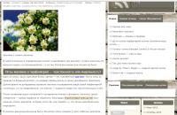 Парфюмерный блог