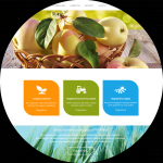 Сайт производителей сельхозпродукции