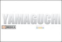 Yamaguchi Electronics Solutions (о компании)