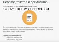 Перевод текстов и документов.