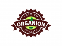 Нейминг+Лого Organion