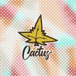 Разработка принтов для коллаборации Cactus X Kostya August