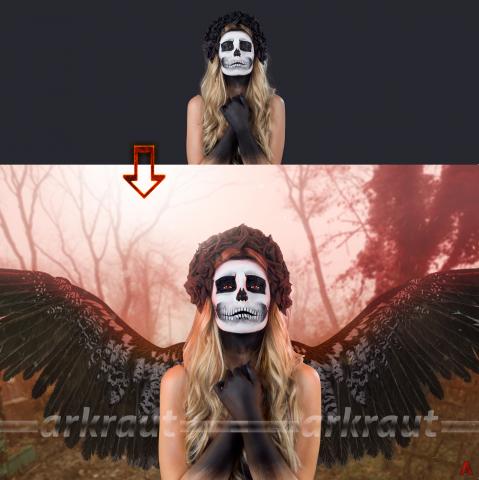 "Коллаж ""Dark Angel"""