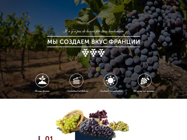 Landing Page для продажи французского вина