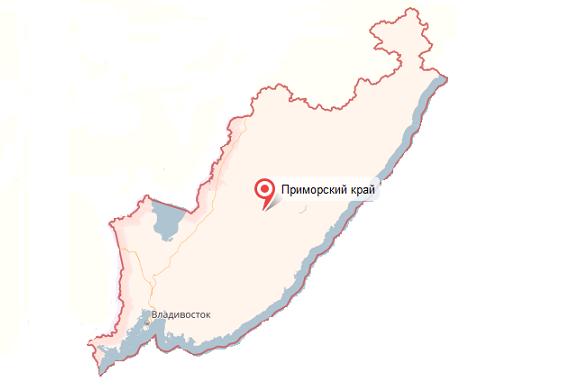Приморский край - услуги таможенного брокера