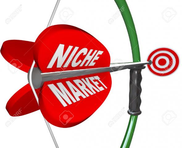 Выбор целевых сегментов рынка (ниш)