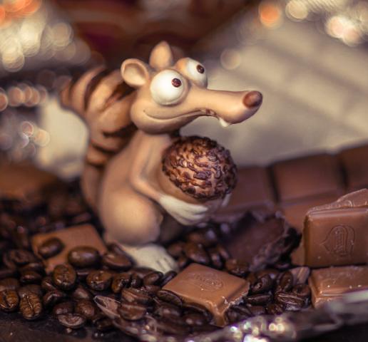 Шоколадная белочка