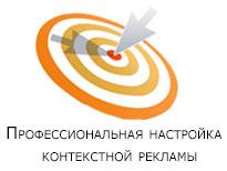 Настройка Яндекс Директ и Google Adwords на реальные продажи