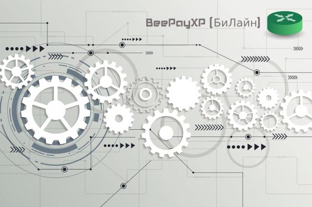 Разработка шлюза по API BeePayXP