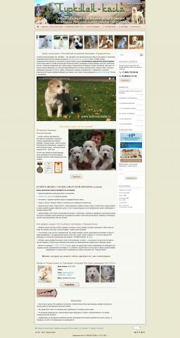 Перенос сайт с самописного движка на WP + адаптивный дизайн