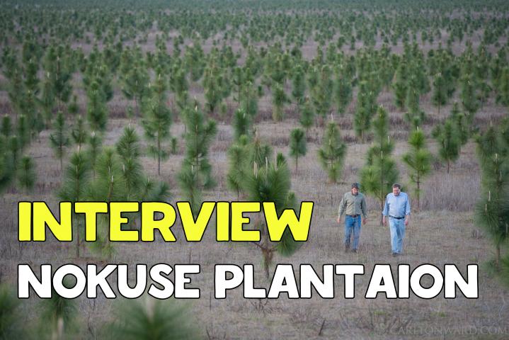 Аудио-интервью на английском о заповеднике Nokuse