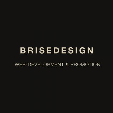 Разработка авторского сайта BRISEDESIGN