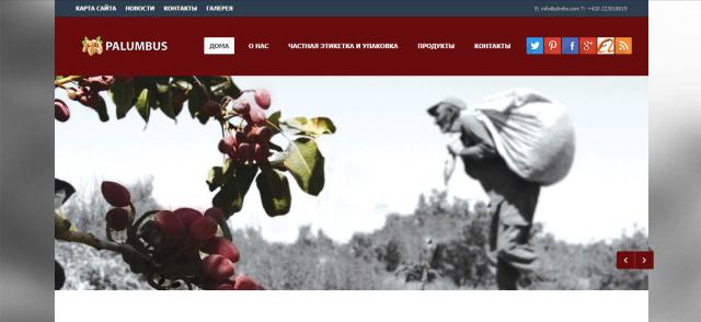 Разработка сайта для чешского рынка http://plmbs.com/