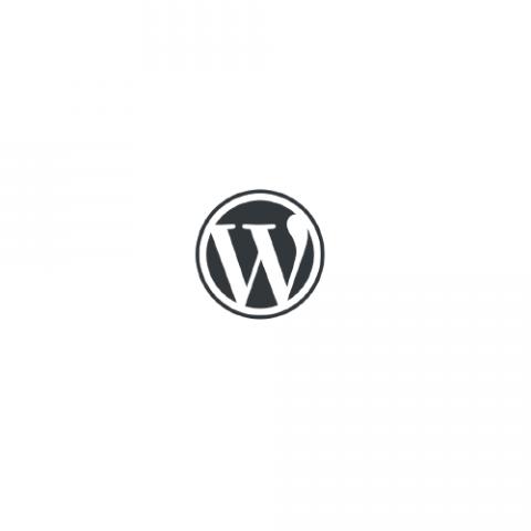 Wordpress услуги и сервис