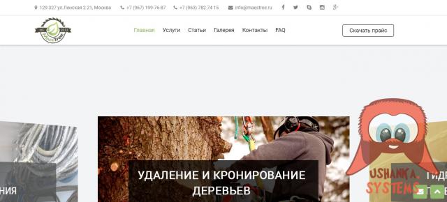 Сайт услуг по удалению и спилу деревьев