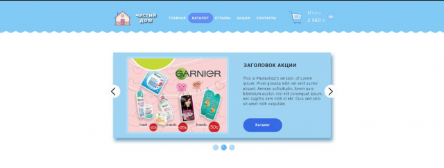 Дизайн интернет магазина с домашней химией