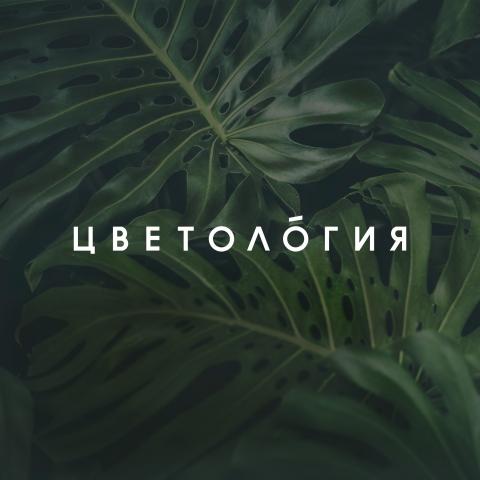 Цветология (Flowerology)