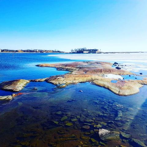 Информационная статья. Экологическая тема в Финляндии