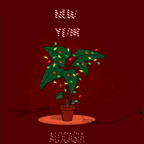 Открыта plants