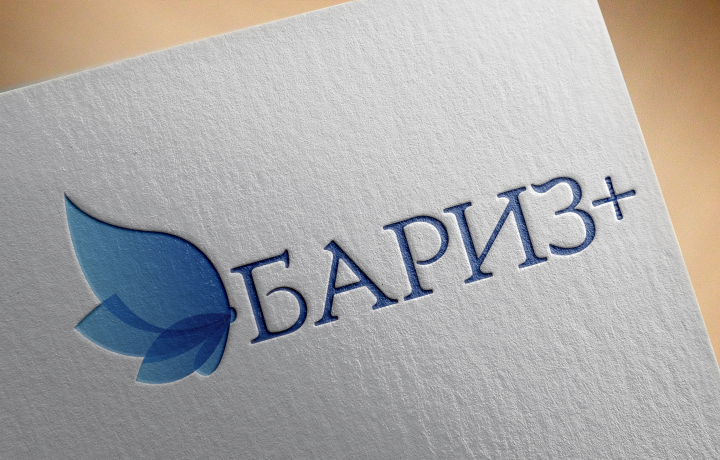 Логотип для компании Бариз+