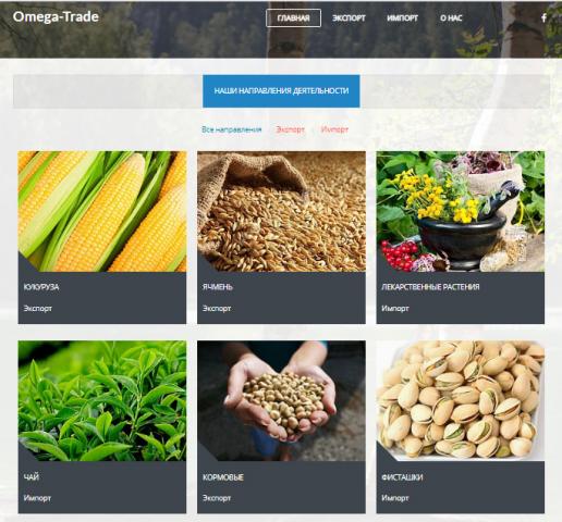 Разработка сайтов на CMS Joomla, Wordpress, Opencart