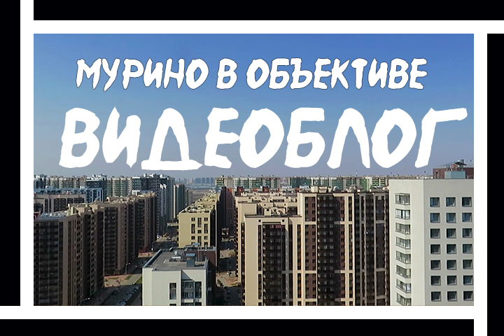 """Видеоблог """"Мурино в Объективе"""". Съемка + Монтаж + Цветокоррекция"""