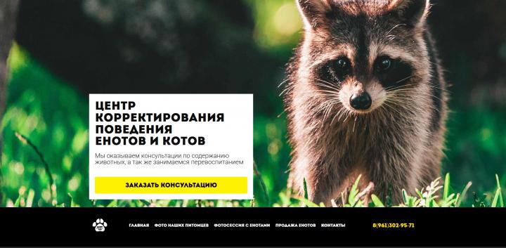 """сайт для """"центра корректирования поведения енотов и котов"""""""