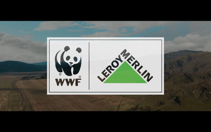 Leroy Merlin x WWF