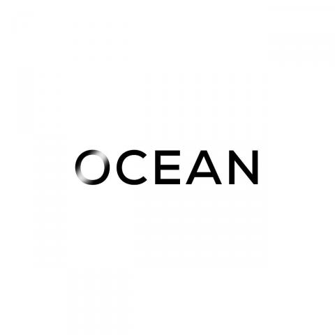 Создание PR стратегии для магазина одежды Ocean Store