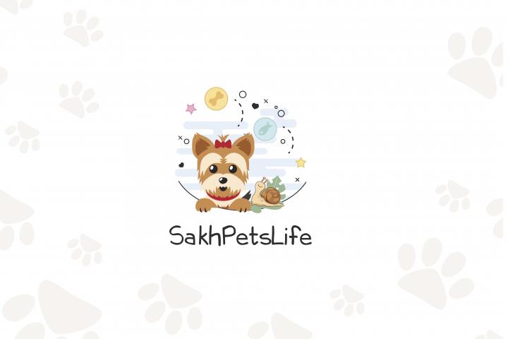 Логотип для ютуб-канала о жизни Ерка и улитки