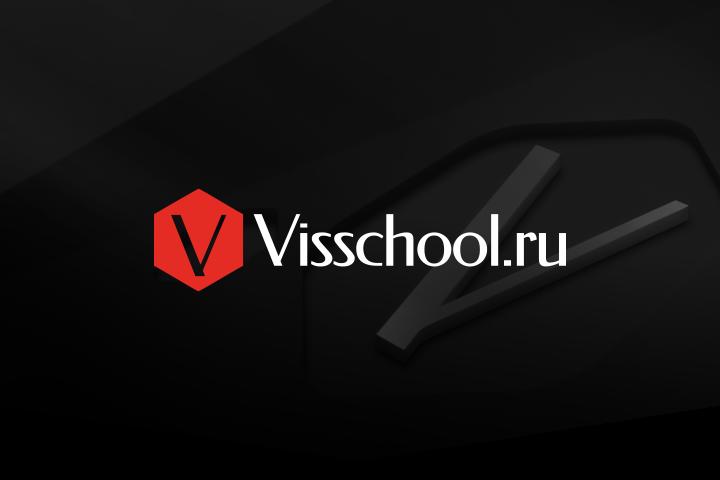 Фирменный стиль Visschool