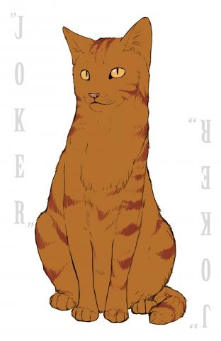 Рыжий карточный кот