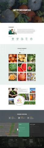 Верстка сайта агропромышленной компании Агроюнион
