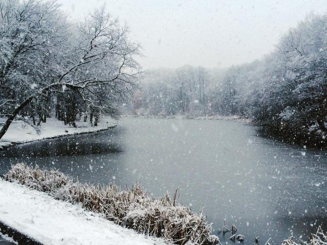 """Продам авторскую песню """"Снег в реке"""""""
