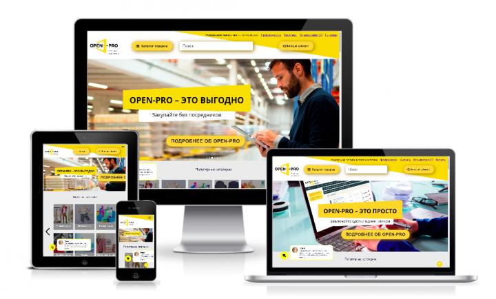 OPEN-PRO.RU - Федеральная торговая интернет-платформа