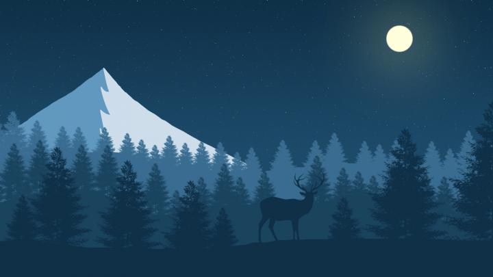 2D landscape (Night)