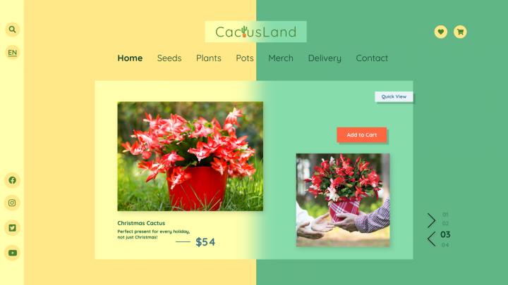 Дизайн сайта для магазина по продаже кактусов