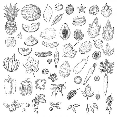 Фрукты, овощи и ягоды.