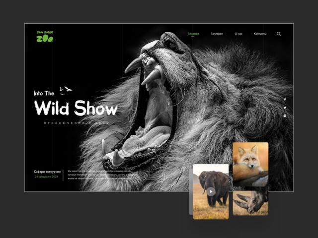 Дизайн сайта для зоопарка