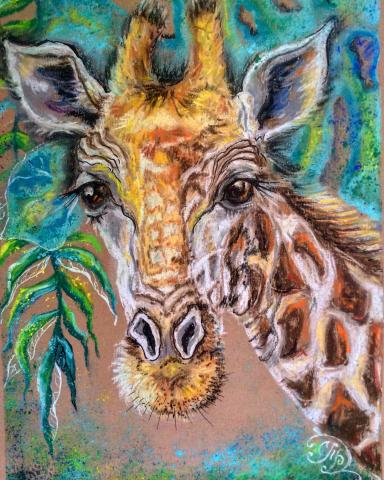 взгляд жирафа