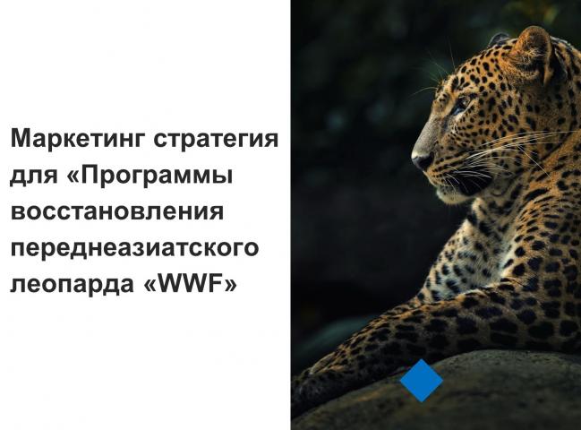 Маркетинг стратегия для «WWF» для Фонда Дикой Природы