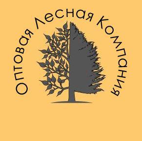 Логотип ОптЛесКом