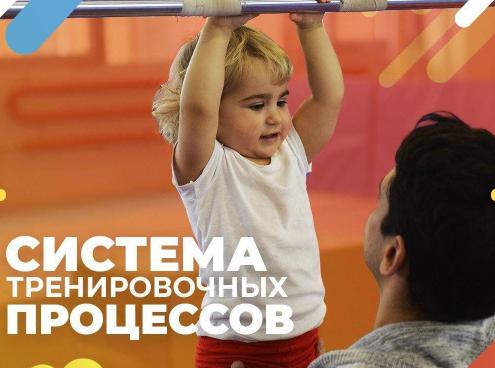 Директ для детской гимнастической школы, 300р - лид