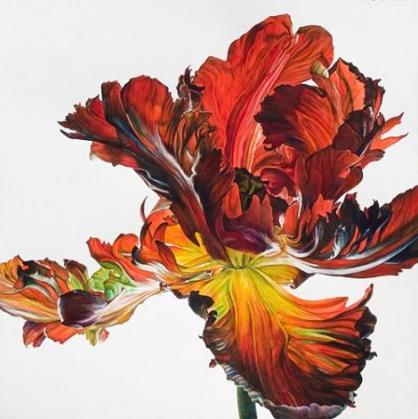 Сообщество британских ботанических художников